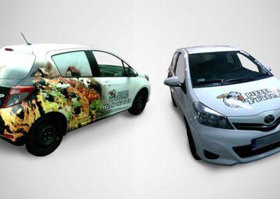 Grafika na pojazdach